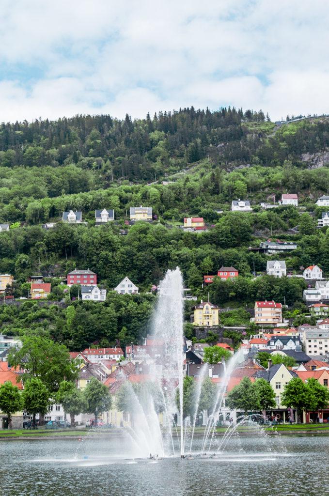 fontaine Bergen